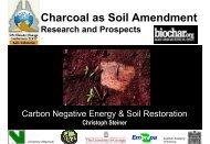 presentation, pdf - Biochar.org