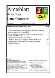 Amtsblatt 04/2008 - Stadt Lauchhammer