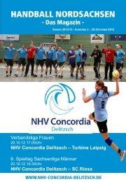 2. Heimspiel gegen SC Riesa 20.10.2012 (pdf - NHV Concordia ...