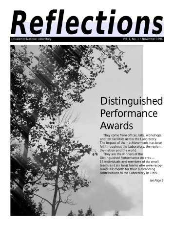 Distinguished Performance Awards
