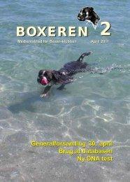 Boxeren 2-2011 - Boxerklubben