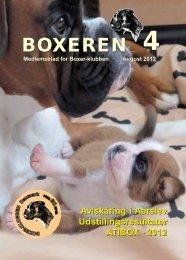 Boxeren 4-2012