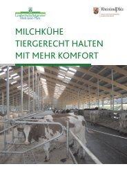 Milchkühe tiergerecht halten mit mehr Komfort