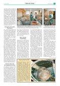 Eigene Wärme für Fisch und Ferkel - PAL-Anlagenbau GmbH - Seite 2