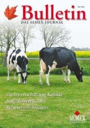 Bulletin 5/2004