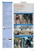 Heft 4/2012 - Pro Tier - Page 2