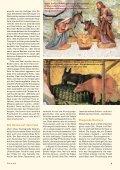 Heft 4/2012 - Pro Tier - Page 5