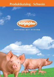 Produktkatalog Schwein (4,0 MB) - Bergophor Futtermittelfabrik