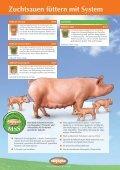 Produktkatalog Schwein (4,0 MB) - Bergophor Futtermittelfabrik - Seite 6