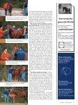 Sanftes Renken und Richten - Good Horsemanship - Seite 2