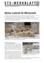 Kleiner Laufstall für Milchschafe - Schweizer Tierschutz STS
