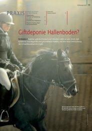 Bayerns Pferd 2012 - Gerblhof