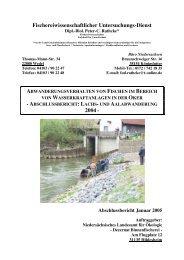 wasserkraftanlagen in der oker - Wanderfische