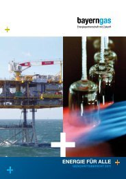 Geschäftsbericht 2011 (PDF) - Bayerngas GmbH
