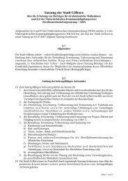 Satzung der Stadt Gifhorn