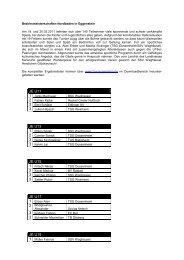 Bericht B-Mst NB (pdf)