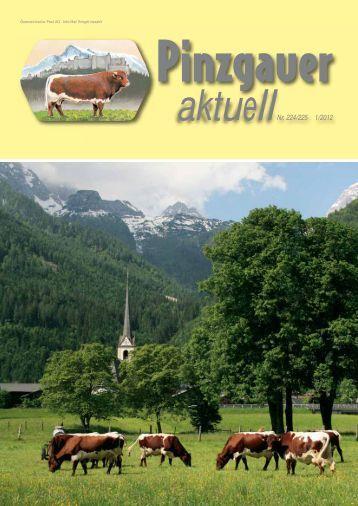 Pinzgauer-Almwanderung auf die Brandalm Ramsau am Dachstein