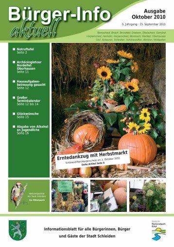 Ausgabe Oktober 2010 - Stadt Schleiden