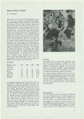1969 - Landzunft Regensdorf - Seite 7