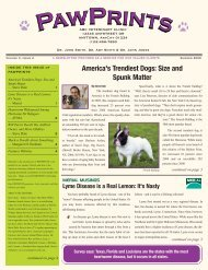America's Trendiest Dogs: Size And Spunk Matter By - Merial