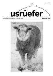 4. Ausgabe Dezember [PDF, 759 KB] - Staufen