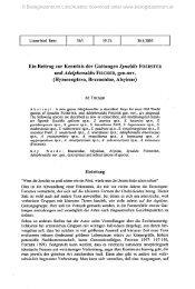 Ein Beitrag zur Kenntnis der Gattungen Synaldis FOERSTER und ...