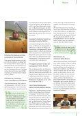 """Heft 10: Grundschule oder """"Vorgymnasium?"""" - BLLV - Seite 7"""