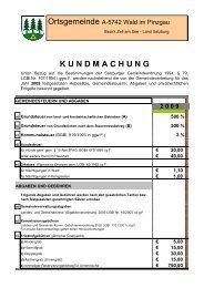2 0 0 9 - Wald im Pinzgau