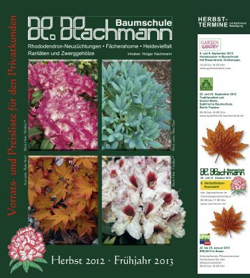 4. rhododendron fertigware - Baumschule Hachmann