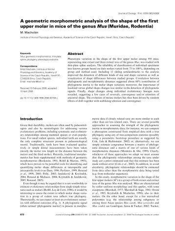 A geometric morphometric analysis of the shape of the first upper ...