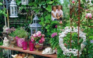 Rost und Rosen bei - Rosa Rostig