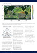 SOLAS News 2010 - Page 3