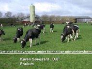 Karen Søegaard , DJF Foulum - LandbrugsInfo