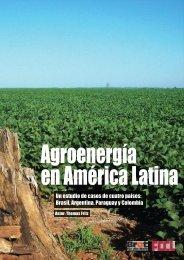 Un estudio de casos de cuatro países: Brasil, Argentina ... - FDCL