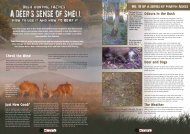 Odours in the Bush - New Zealand Outdoor Hunting Magazine