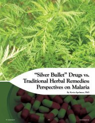 """Silver Bullet"" Drugs vs. Traditional Herbal Remedies ... - Anamed"