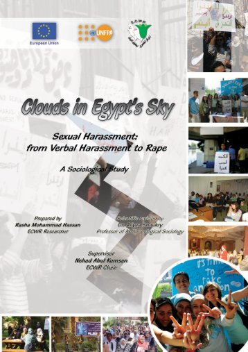Clouds in Egypt's Sky: Sexual Harassment from - UNFPA, Egypt