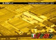 katalog 2010-12angl - Semo