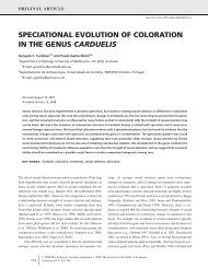 speciational evolution of coloration in the genus carduelis