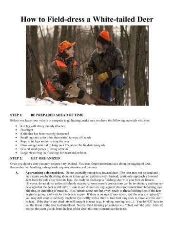 How to Field-dress a White-tailed Deer