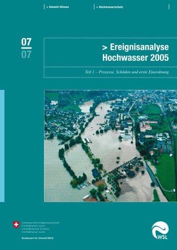 Ereignisanalyse Hochwasser 2005 - WSL