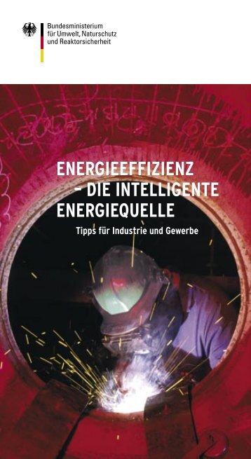 Energieeffizienz – Die intelligente Energiequlle - Tipps für ... - in Fulda