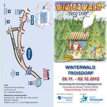 Der Flyer zum Troisdorfer Winterwald 2012.