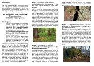 Download Flyer - Naturpark Siebengebirge