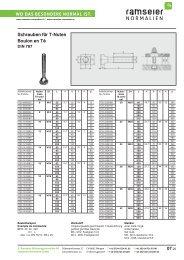 Eléments de fixation [PDF 3,44 MB] - Ramseier-Normalien