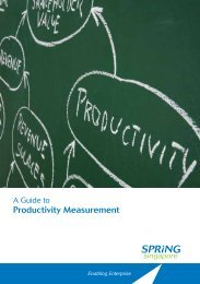 A Guide to Productivity Measurement - Spring