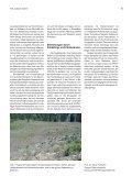 Durchforstung der Douglasie - 40 Jahre Standraumversuch. FVA ... - Seite 5