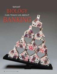 Banking - Santa Fe Institute