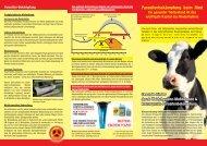 Parasitenbekämpfung beim Rind Ein gesunder Tierbestand ist das