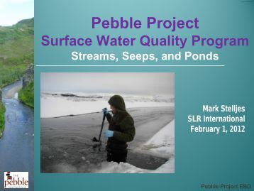 12 Surface Water Quality - Mark Stelljes.pdf